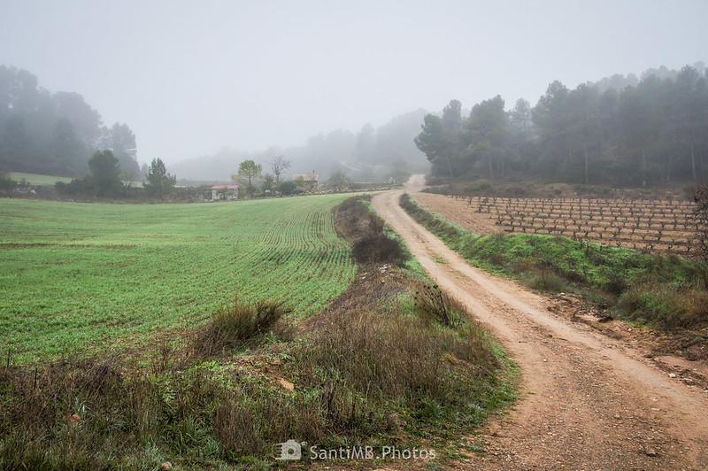 Camino de Mas de Bondia a Guimerà en el Fondo dels Collets