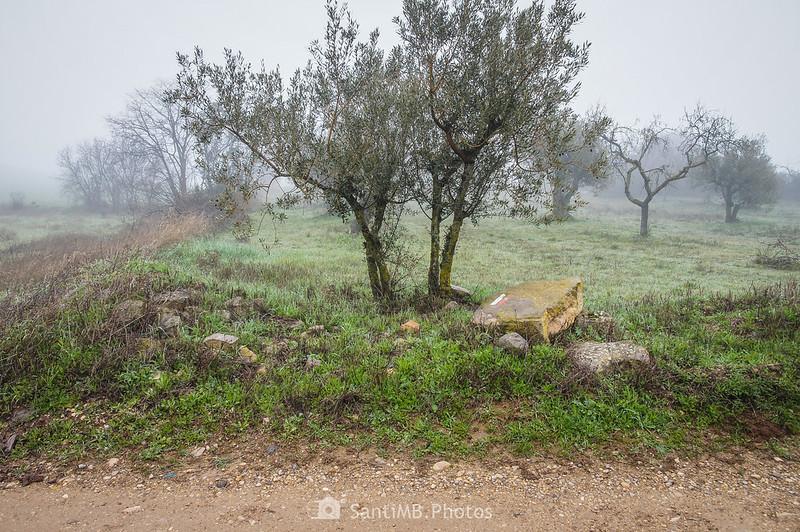 Marca del GR-3 en el límite entre Guimerà y Verdú