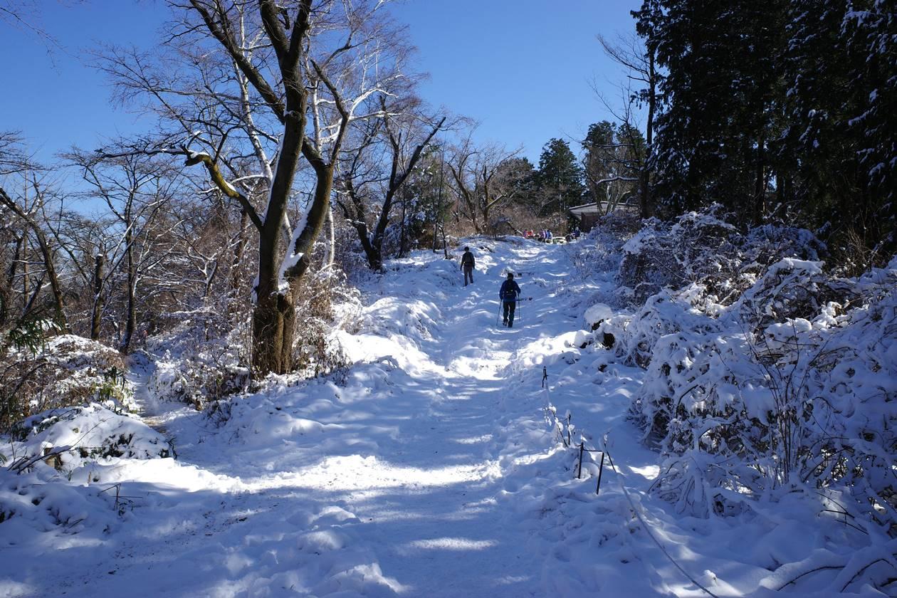 陣馬山~景信山~高尾山 冬の雪山縦走登山