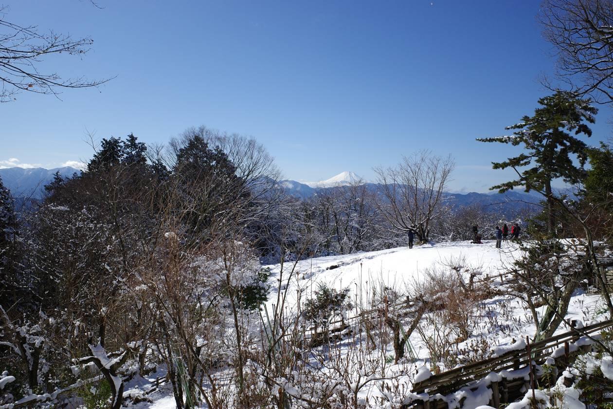 城山から眺める富士山