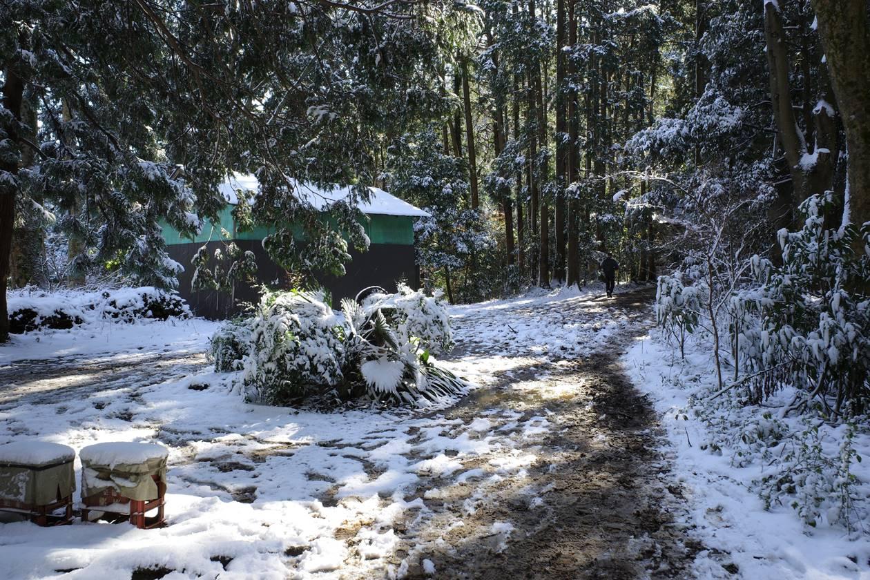 冬の小仏峠