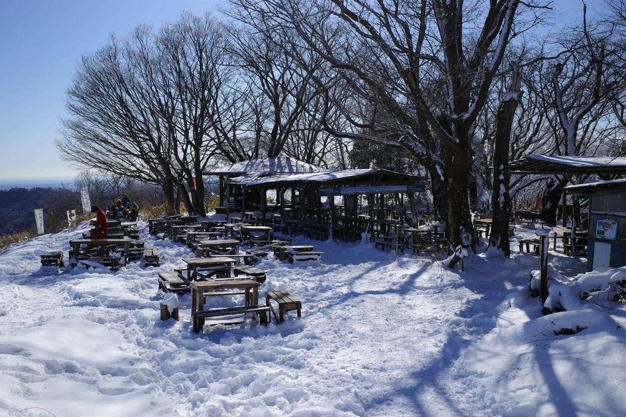 冬の景信山