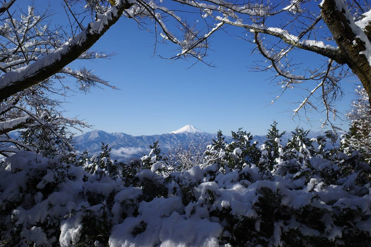 明王峠から眺める富士山