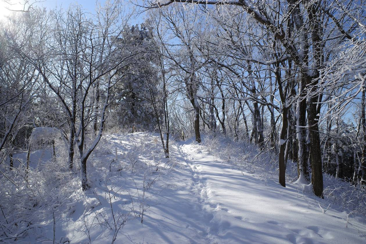 冬の高尾山 霧氷美しい雪山登山