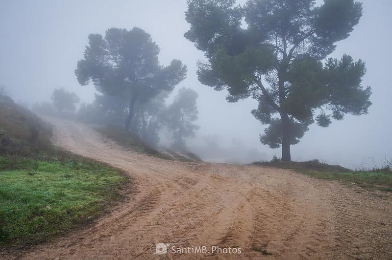 Cruce en el camino de Mas de Bondia a Guimerà