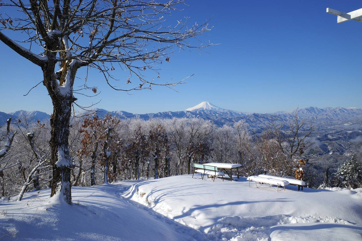 陣馬山~高尾山 霧氷彩る日帰り雪山登山