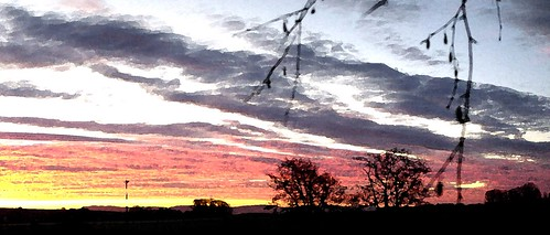 sunrise sky orange clouds golden trees silhouette perthshire panorama bankfoot