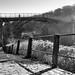 "<p><a href=""https://www.flickr.com/people/nigelboulton/"">nigelboulton72</a> posted a photo:</p>  <p><a href=""https://www.flickr.com/photos/nigelboulton/49408534698/"" title=""January morning by the bridge""><img src=""https://live.staticflickr.com/65535/49408534698_2f19d048e0_m.jpg"" width=""240"" height=""160"" alt=""January morning by the bridge"" /></a></p>  <p>Copyright 2020 Nigel Boulton</p>"