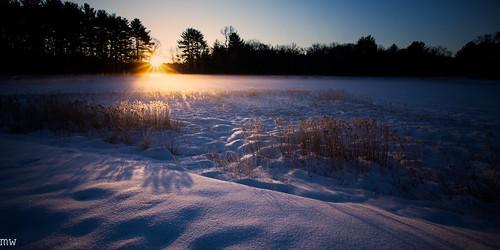 cranberry bog sunrise