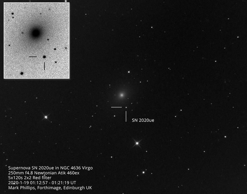 Supernova in NGC4636 SN 2020ue