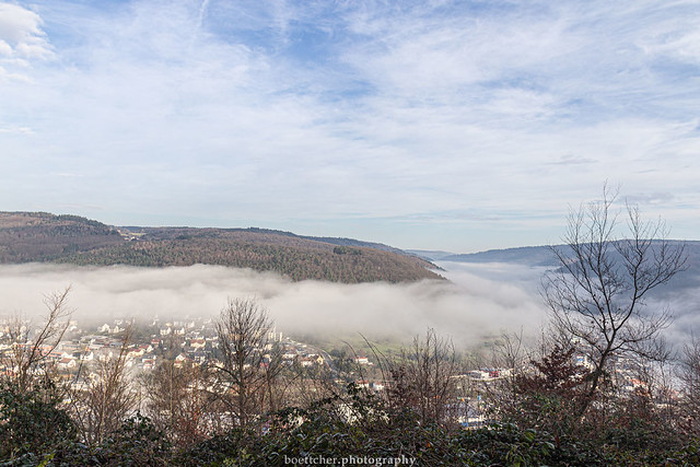 Misty Neckar Valley - January 2019 V