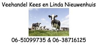 Veehandel Linda en Kees Nieuwenhuis