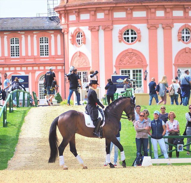 Germany - Dressage Contest with best Riders of the World in Wiesbaden-Biebrich beside the Old Castle in the Park - June 2019