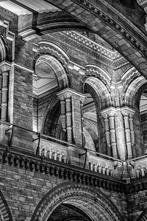 Natural History Museum - Lighting