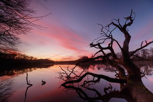 Hamble River Sunset
