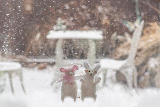 It finally snowed!!! HSS!