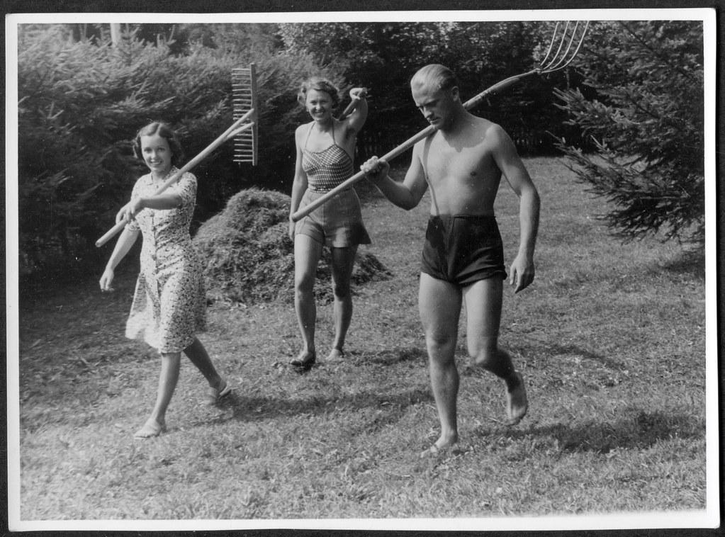ArchivV27 Heuernte, 1950er