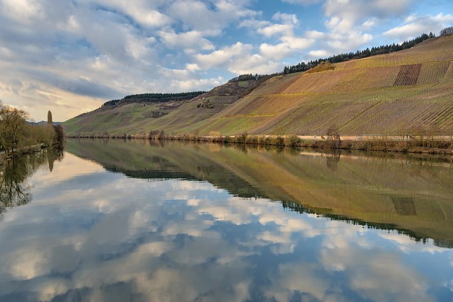 *Longuich/Moselle @ river reflections*