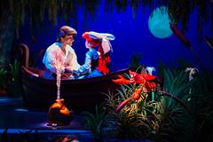 Journey of the Little Mermaid