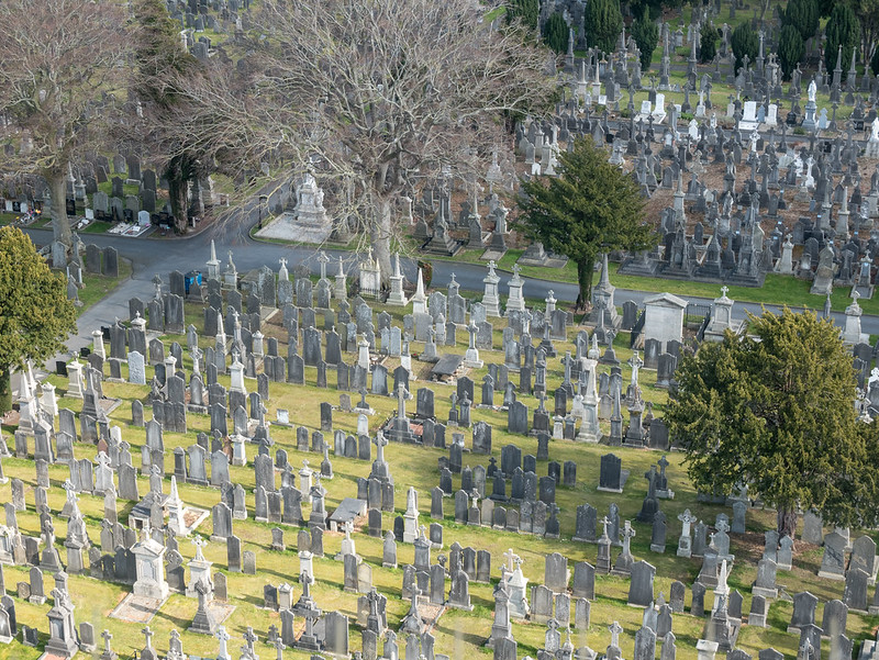 The view from the top of the O'Connell Tower, Glasnevin Cemetery, Dublin
