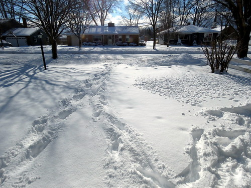 our driveway