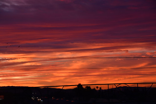 January 19: Sunrise Sky