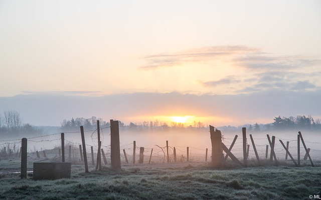 Sunrise With Mist