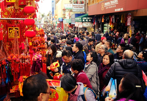 Lunar New Year Flower Fair