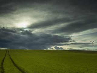 Winter Sky (II)