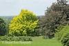 Dawes Arboretum (51)