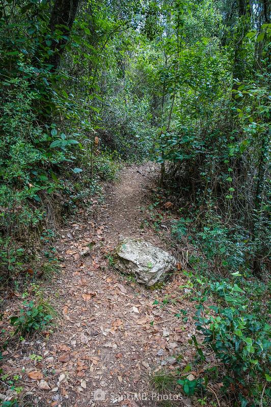 Camino de les Gorges del Foix cerca de la Presa de Dosrius
