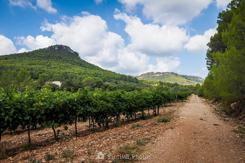 El Tossal de Foix desde cerca del Trull