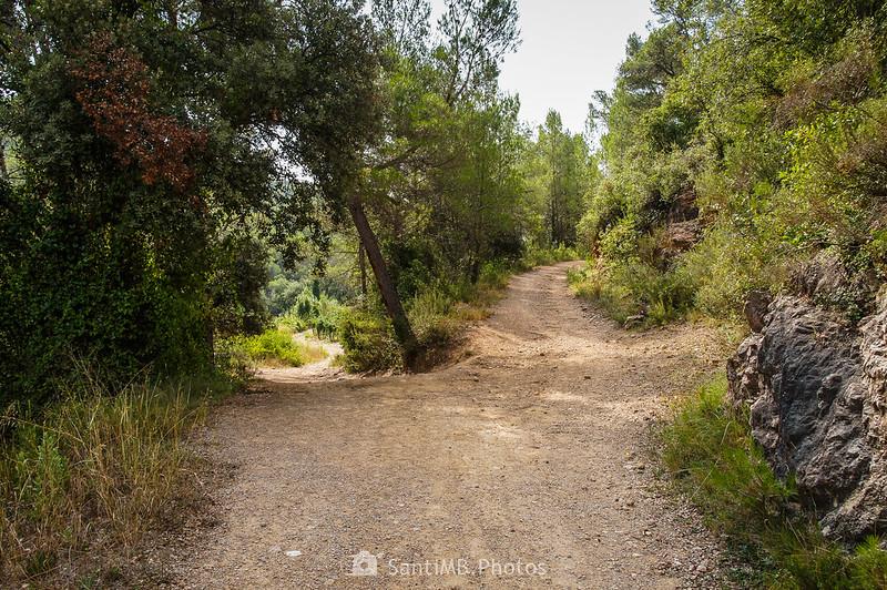 Camino cerca de los Pèlags de Foix