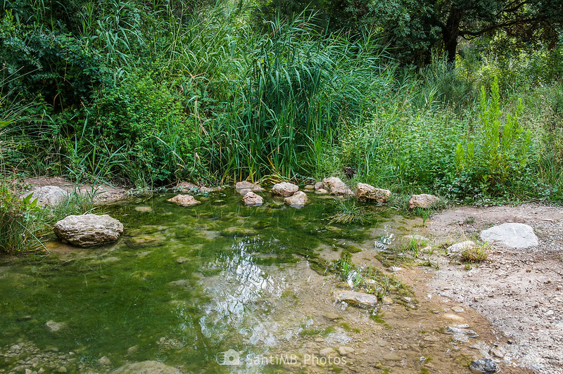 Cruzando el Foix por el Gual del Trull