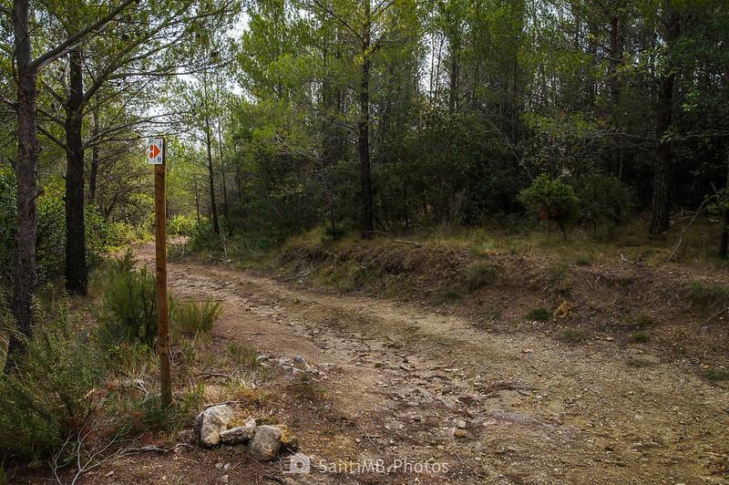 Pista hacia les Valls de Foix