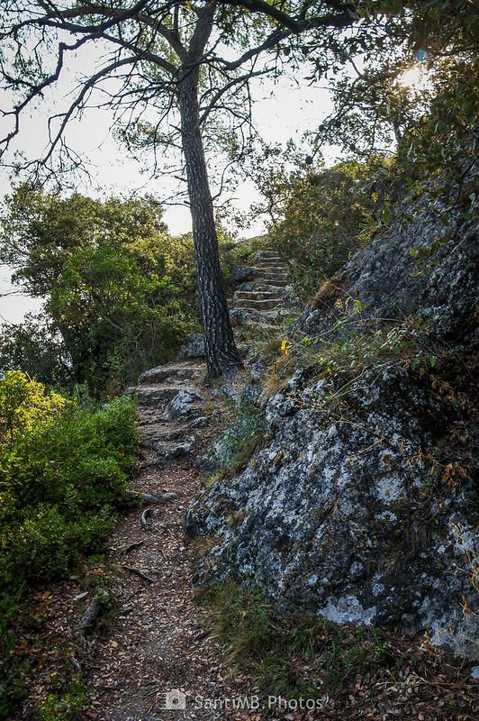 Camino de la cova de la Mare de Déu de Foix