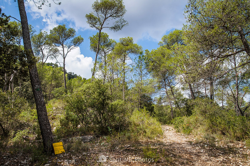 Hacia Can Bosc de Baix