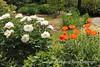 Dawes Arboretum (49)