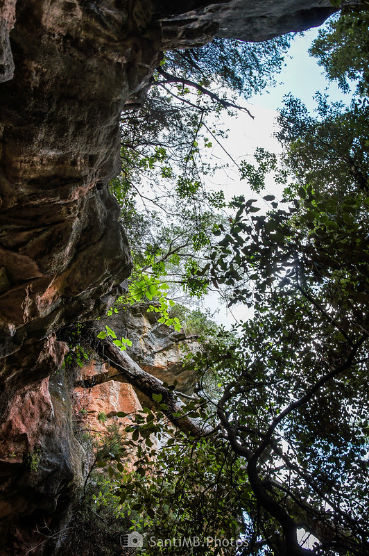 Parte superior de la bauma junto al Foix