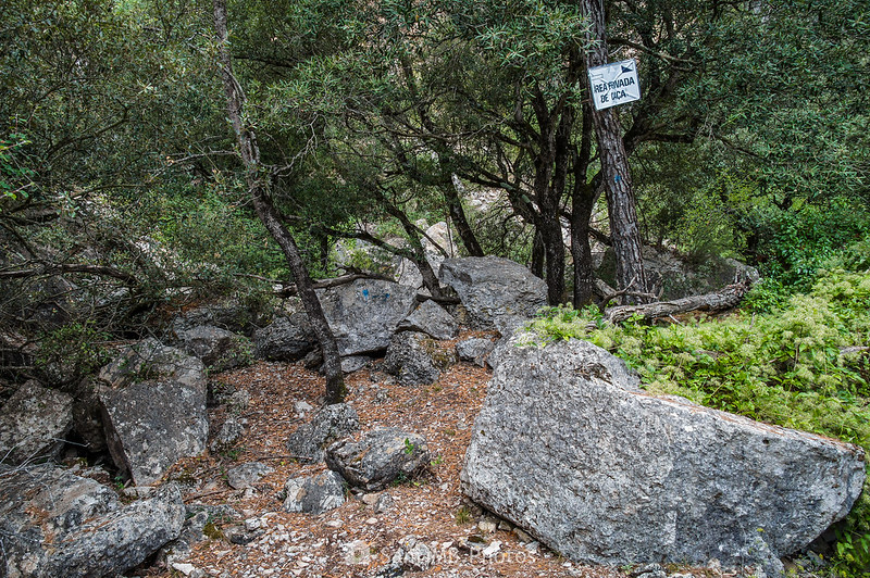Rocas en el camino de las Gorges del Foix