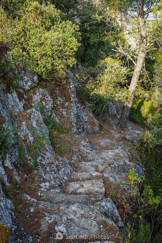Camino a la Cova de la Mare de Déu de Foix