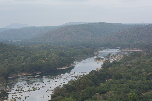 The Calm Kaveri