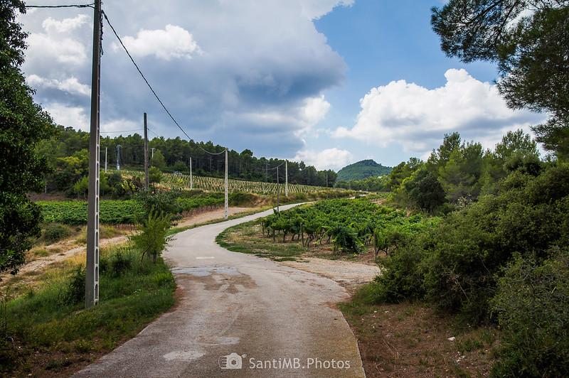 Camino de Cal Rossell de les Bassegues