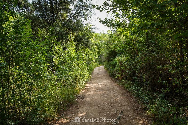Camino a los Pèlags de Foix