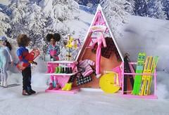Barbie Ski Shop Boutique Ski Fun