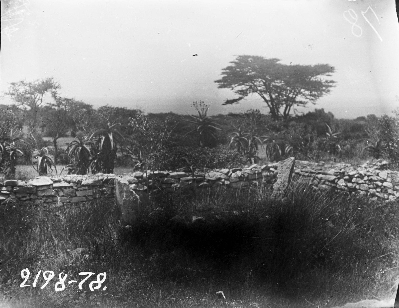 25. Могила сомали
