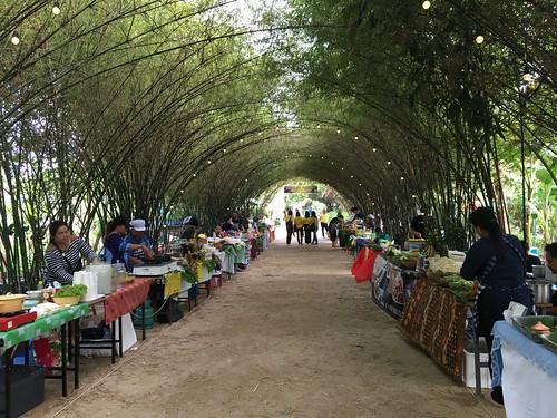 サムイ島 土日開催 バンラック マングローブ域沿いエコ、ローカルウォーキングストリート