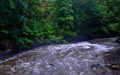 Rapids and Waters of Brandywine Creek (Cuyahoga Valley National Park)