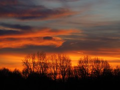 Beautiful Sunset near Utrecht on 16-1-2020