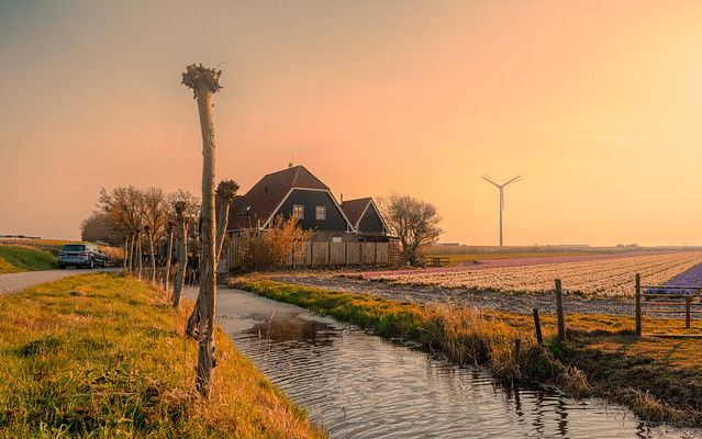 A House in Holland.